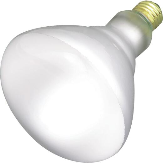 Satco 65W Frosted Medium Base BR40 Reflector Incandescent Floodlight Light Bulb